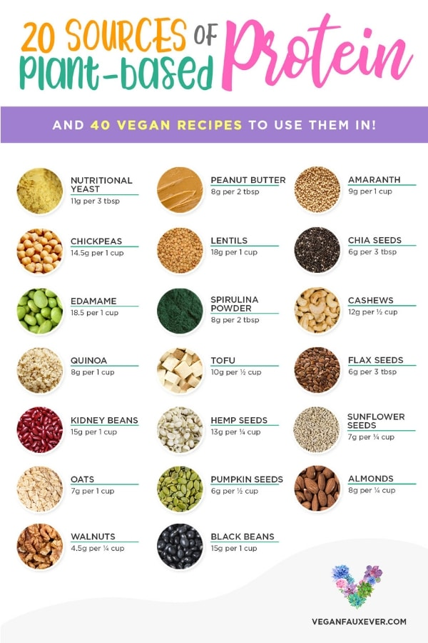 Think you can't get enough protein on a vegan diet? These vegan protein sources will make you forget about meat. Some plant-based proteins include ...