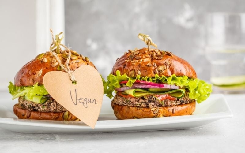 vegan alternatives to burgers