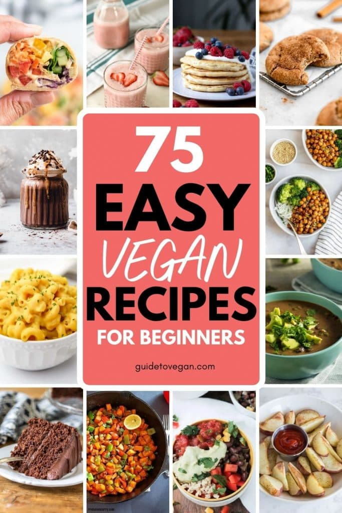 easy vegan recipes for beginners